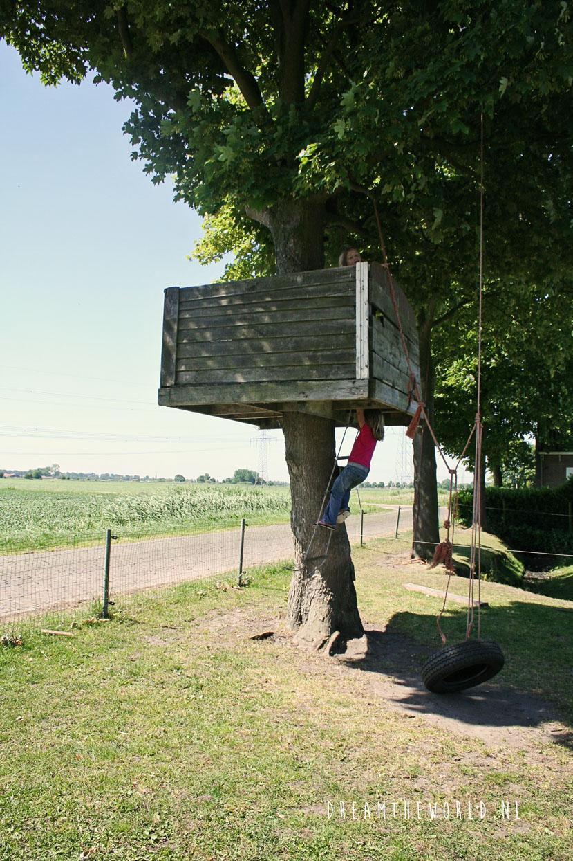 2009 Weekendje Biesbosch dtw (92)