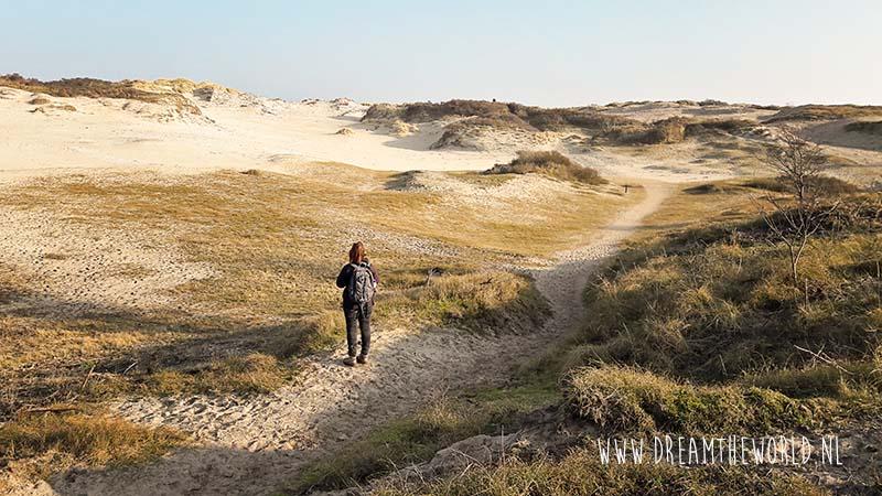 Wandelen in de Meeuwenduinen bij Westenschouwen