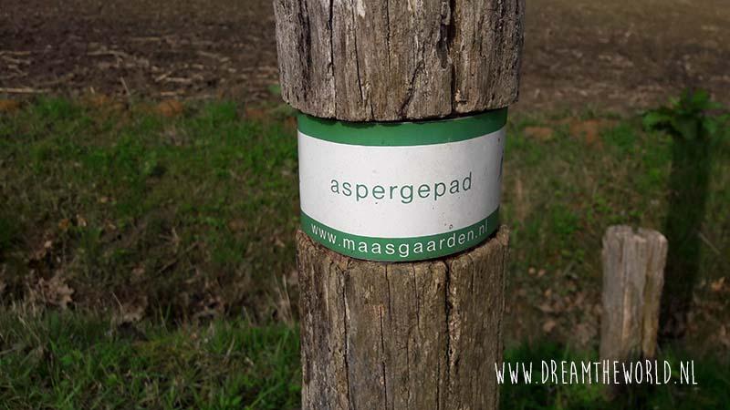 Wat je nog niet wist over asperges in Limburg
