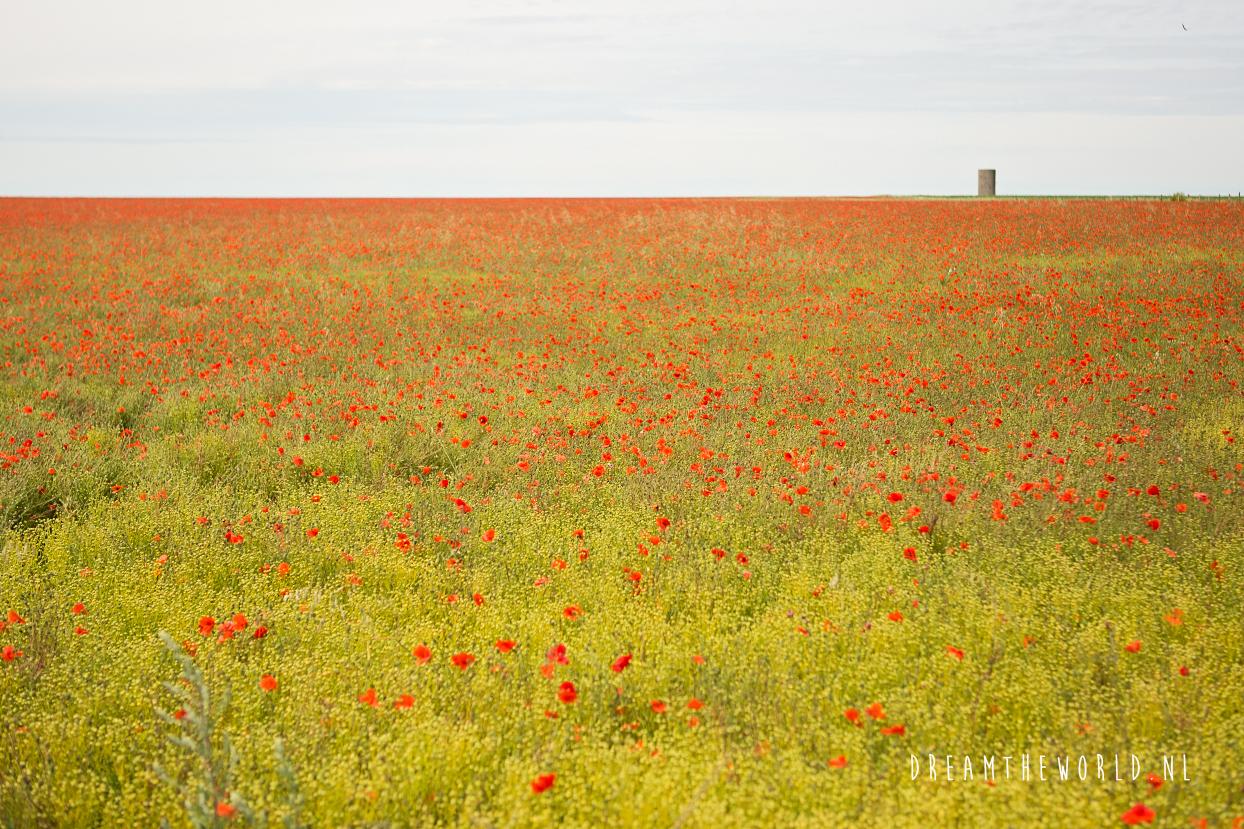 Roadtrip Zuid Engeland mooiste plekken