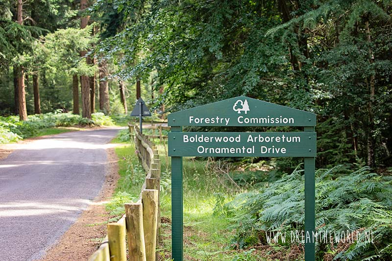Wat te doen in New Forest National Park in Engeland