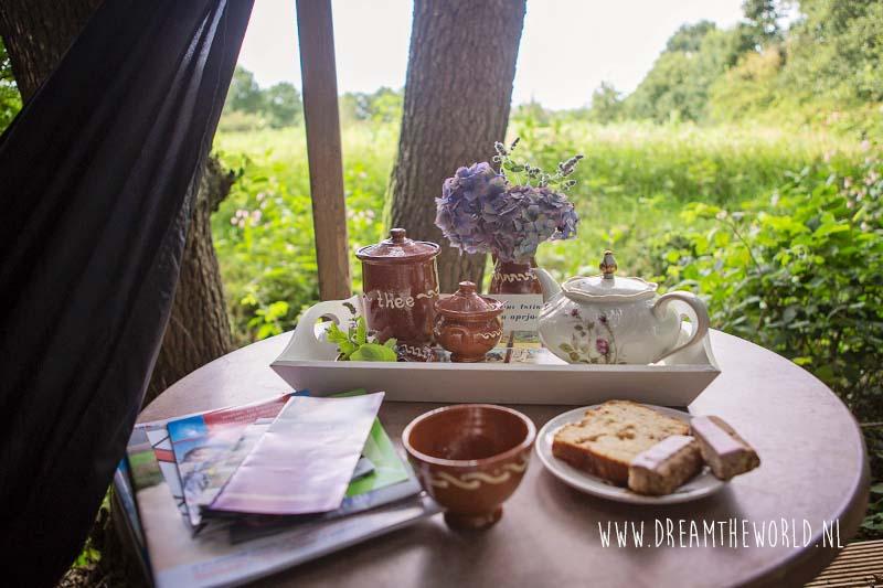B&B Jinkepaed Friesland: heerlijk genieten in het groen