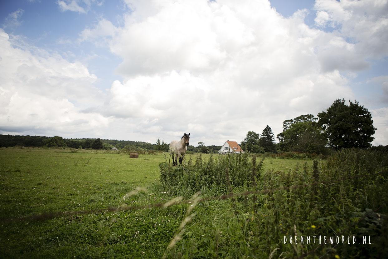 Platteland Lompret