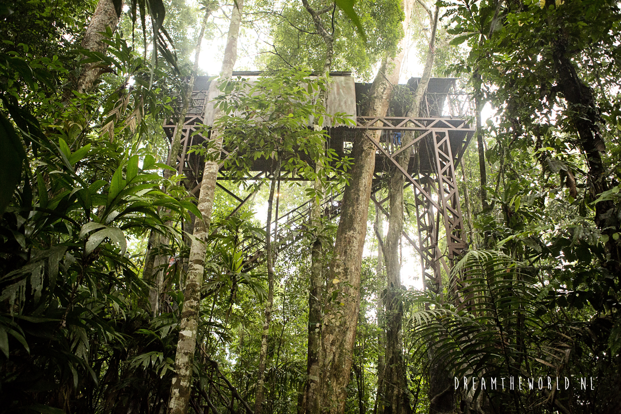 Boomhut Boca Tapado Costa Rica