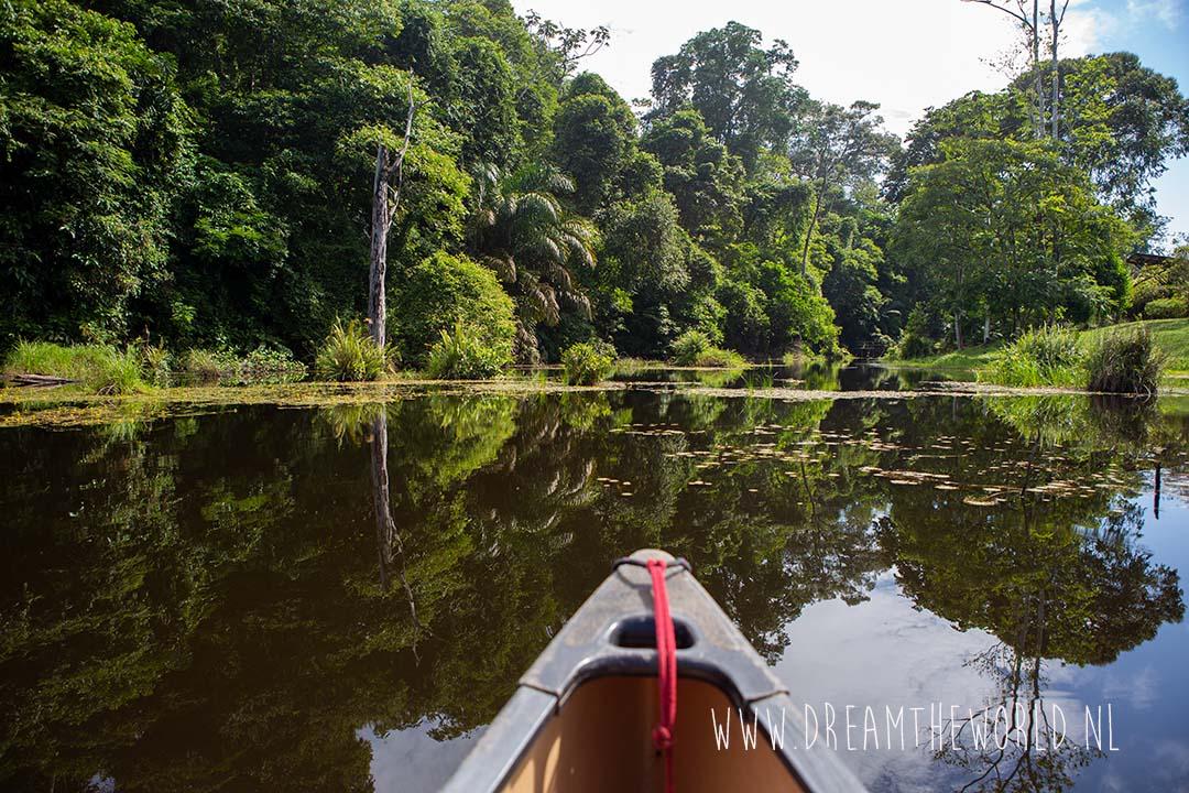 Boca Topada Costa Rica