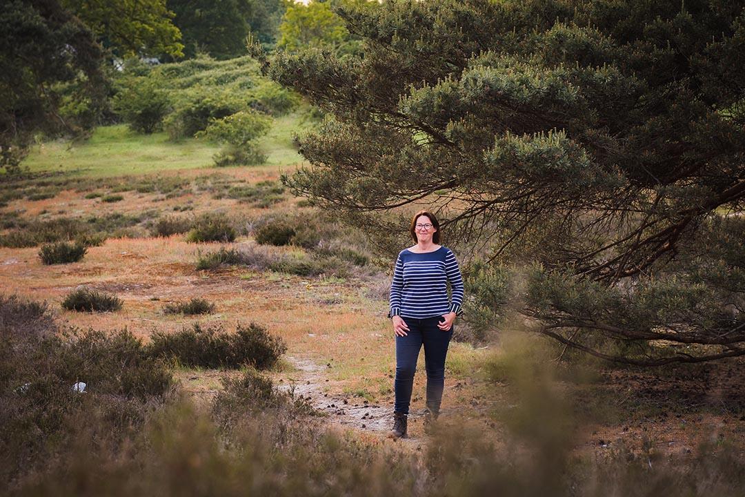 Heide bij de Brunssummerheide in Limburg