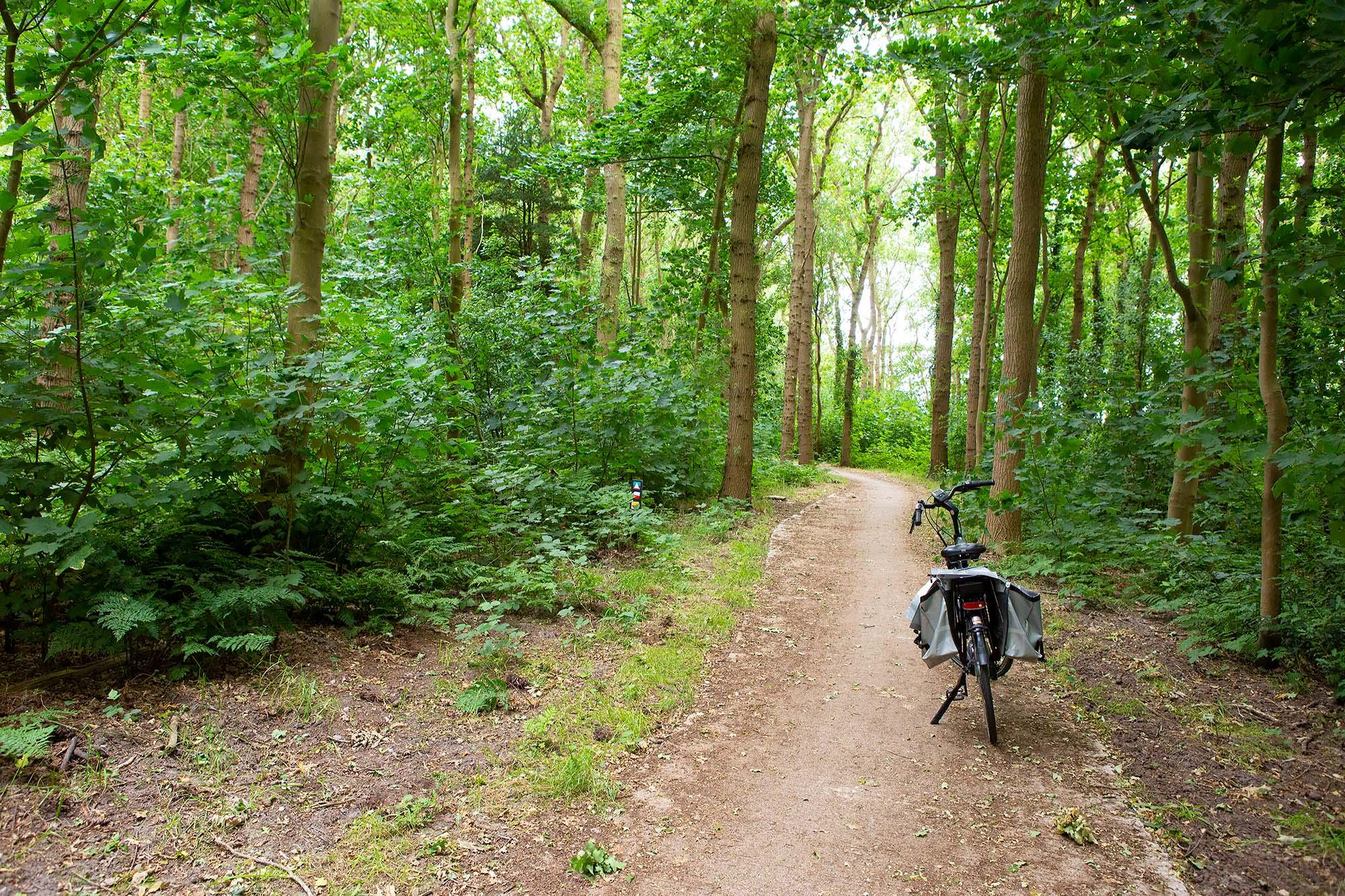 Vakantie in zuidwest Friesland: fietsen door Gaasterland