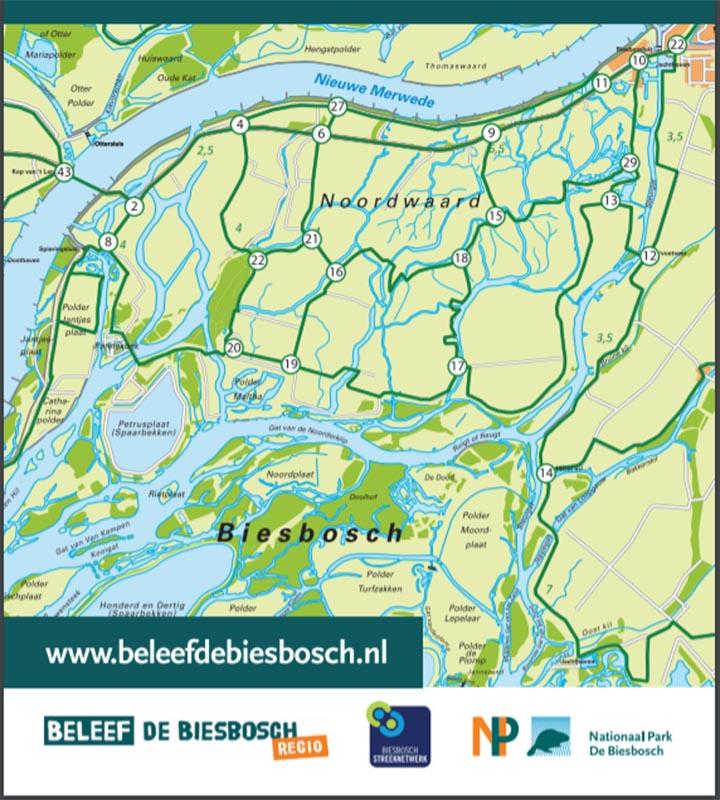 Fietsknooppunten netwerk De Biesbosch