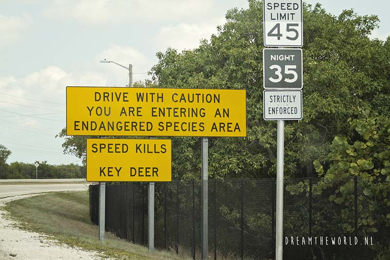 Florida hert roadsign