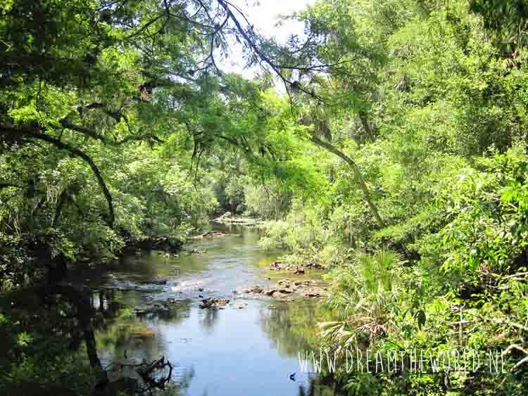 Natuur en dieren Florida