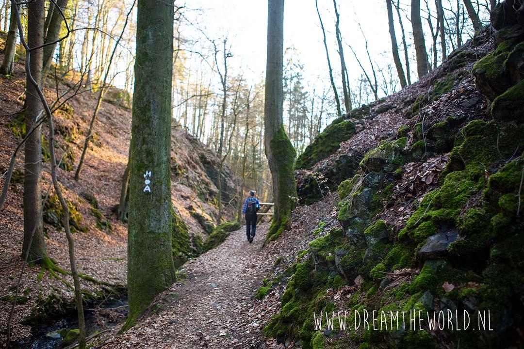 Firnsbachtal langs de Habichtswaldsteig