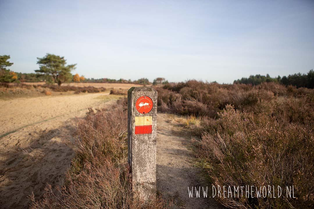 Wandelroute Mier Kalmthoutse Heide