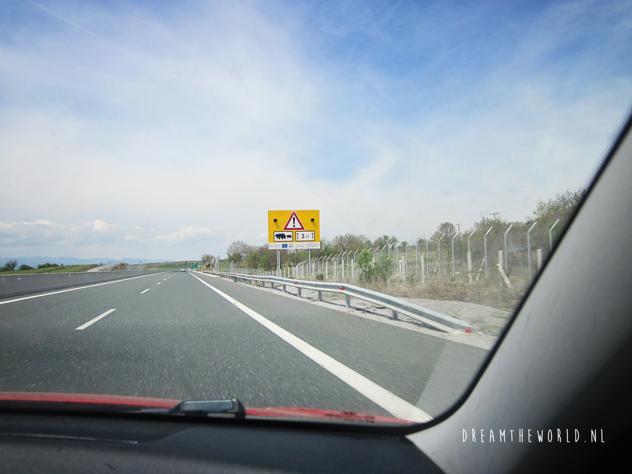 Wildlife roadsigns spannende ontmoetingen onderweg