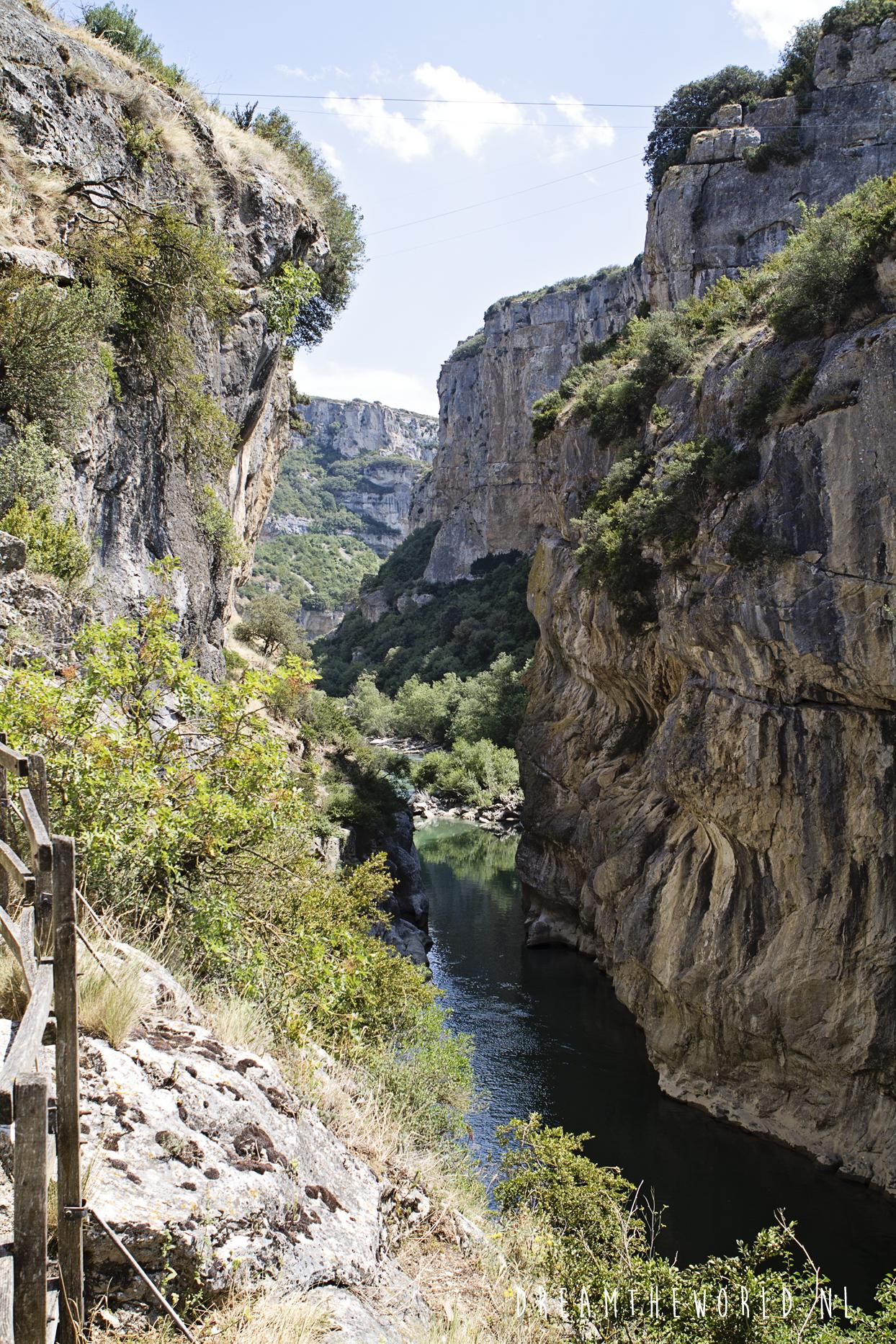 Foz de Lumbier in Spanje kloof vol gieren