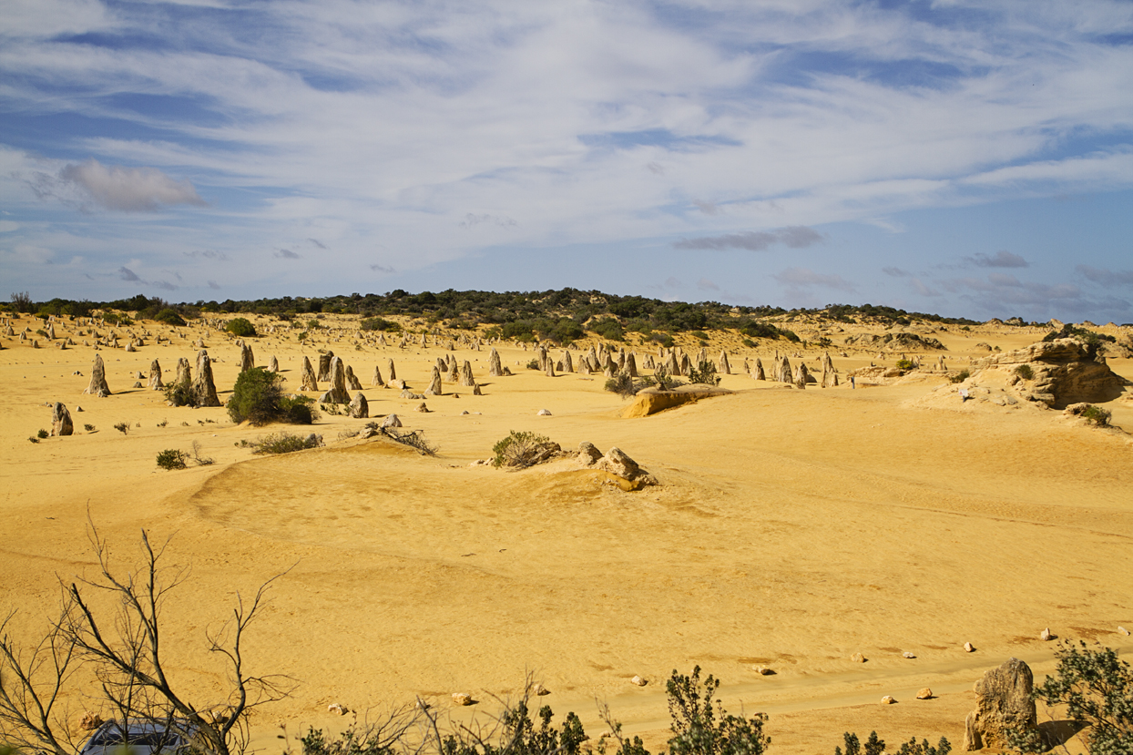 The Pinnacles Nambung National Park Australië