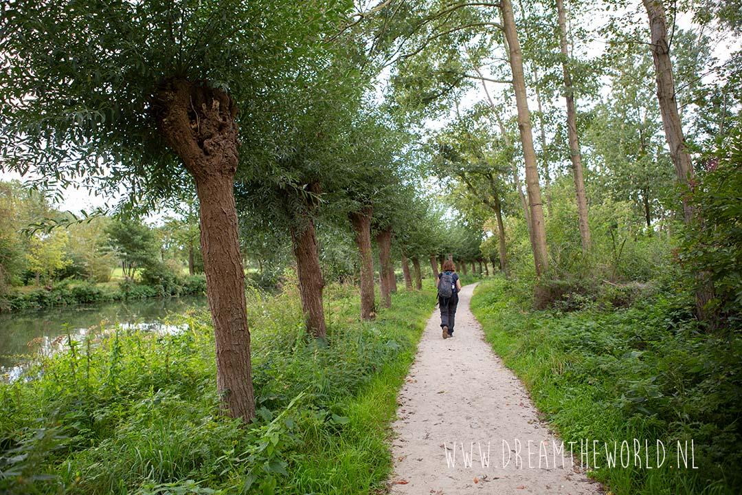 Wandelen langs de Kromme Rijn in Utrecht