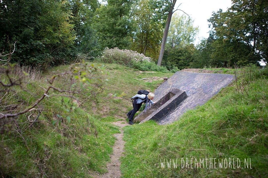 Bunkers bij Fort Rhijnauwen