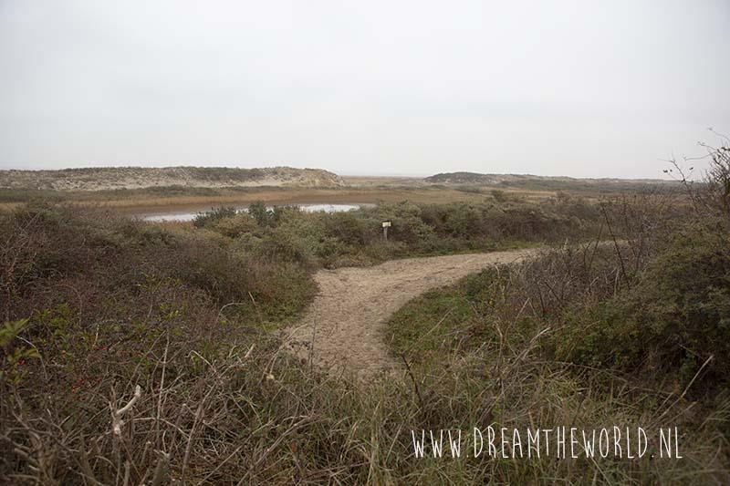 Kwade Hoek wandelroute door duinen van Goeree
