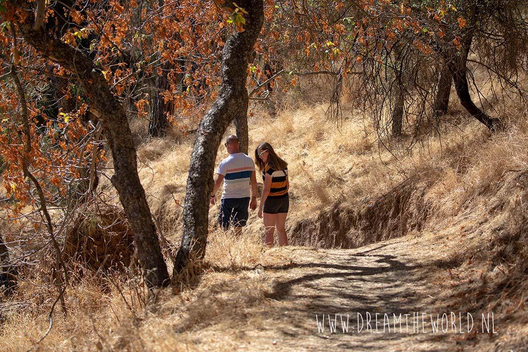 Vallecitos Trail