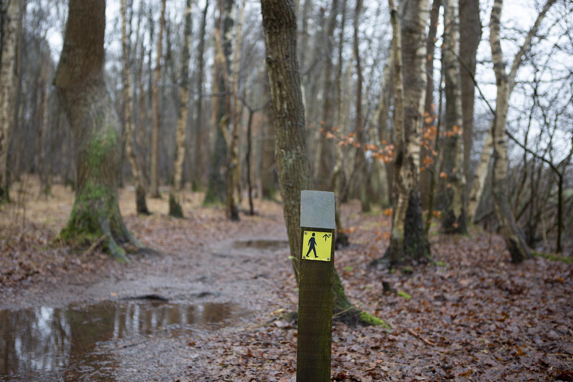 Wandelroute Landal De Amerongse Berg