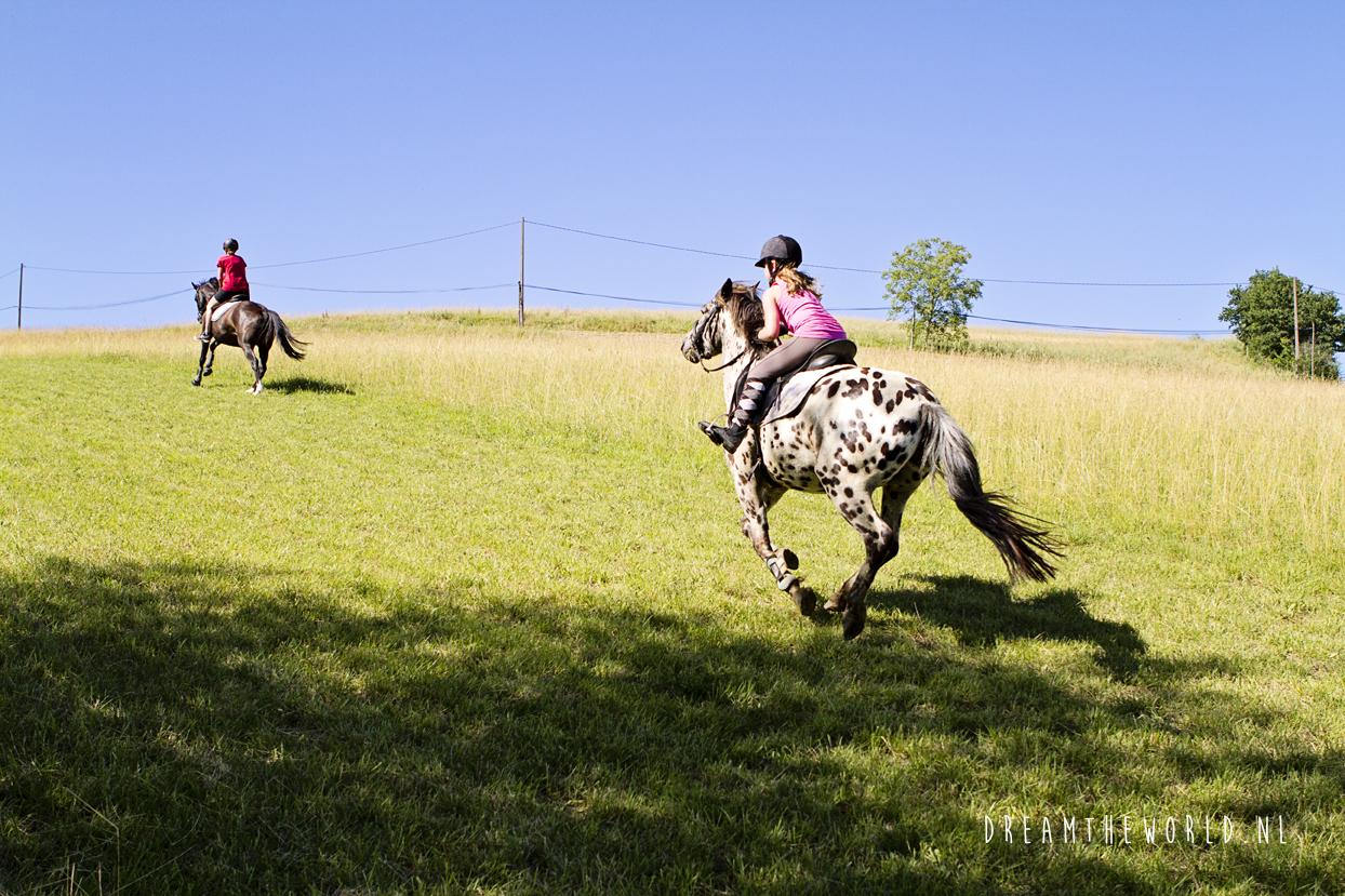 4x leuke campings met paarden in Frankrijk