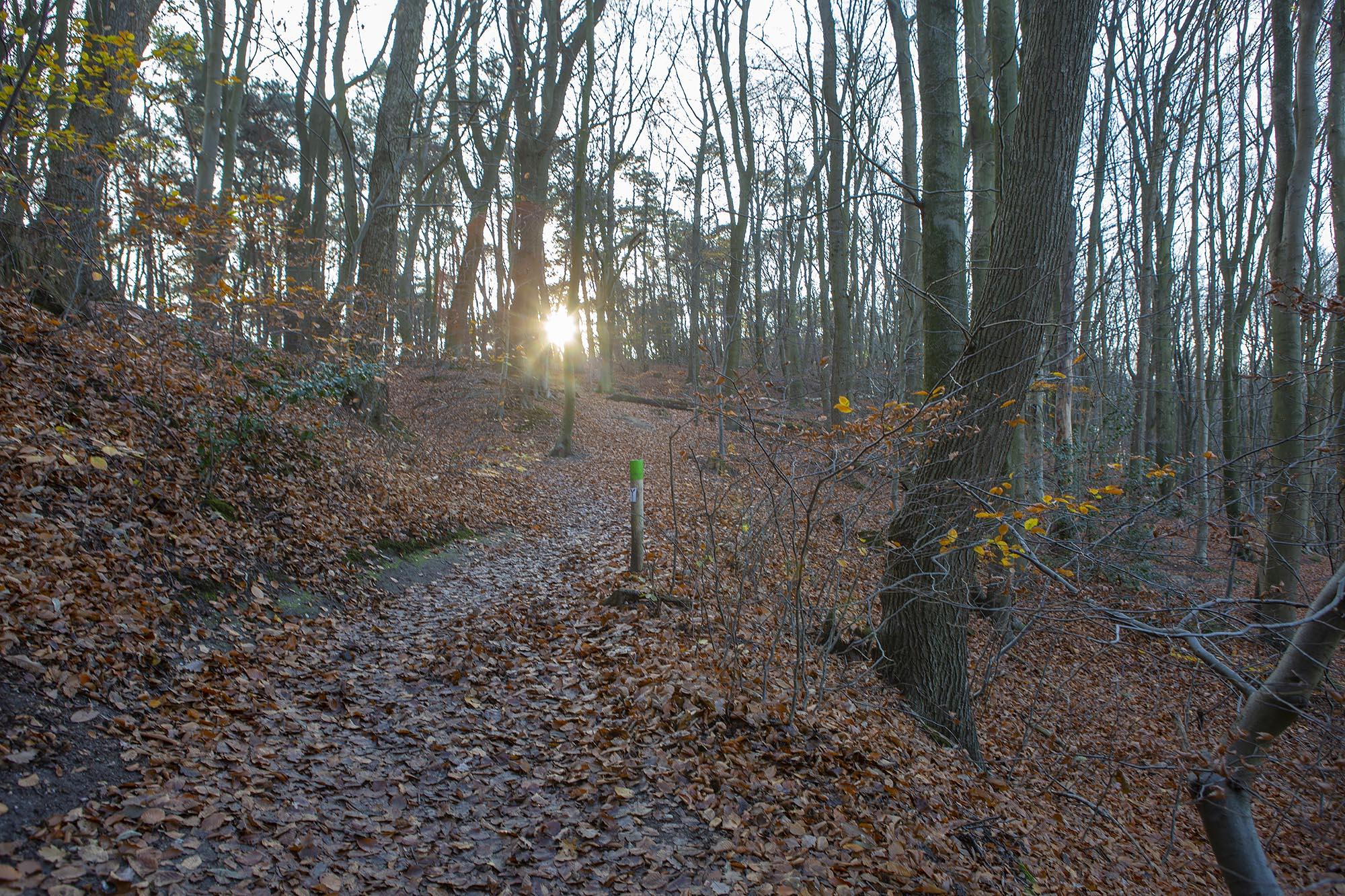 N70 wandelroute Nijmegen