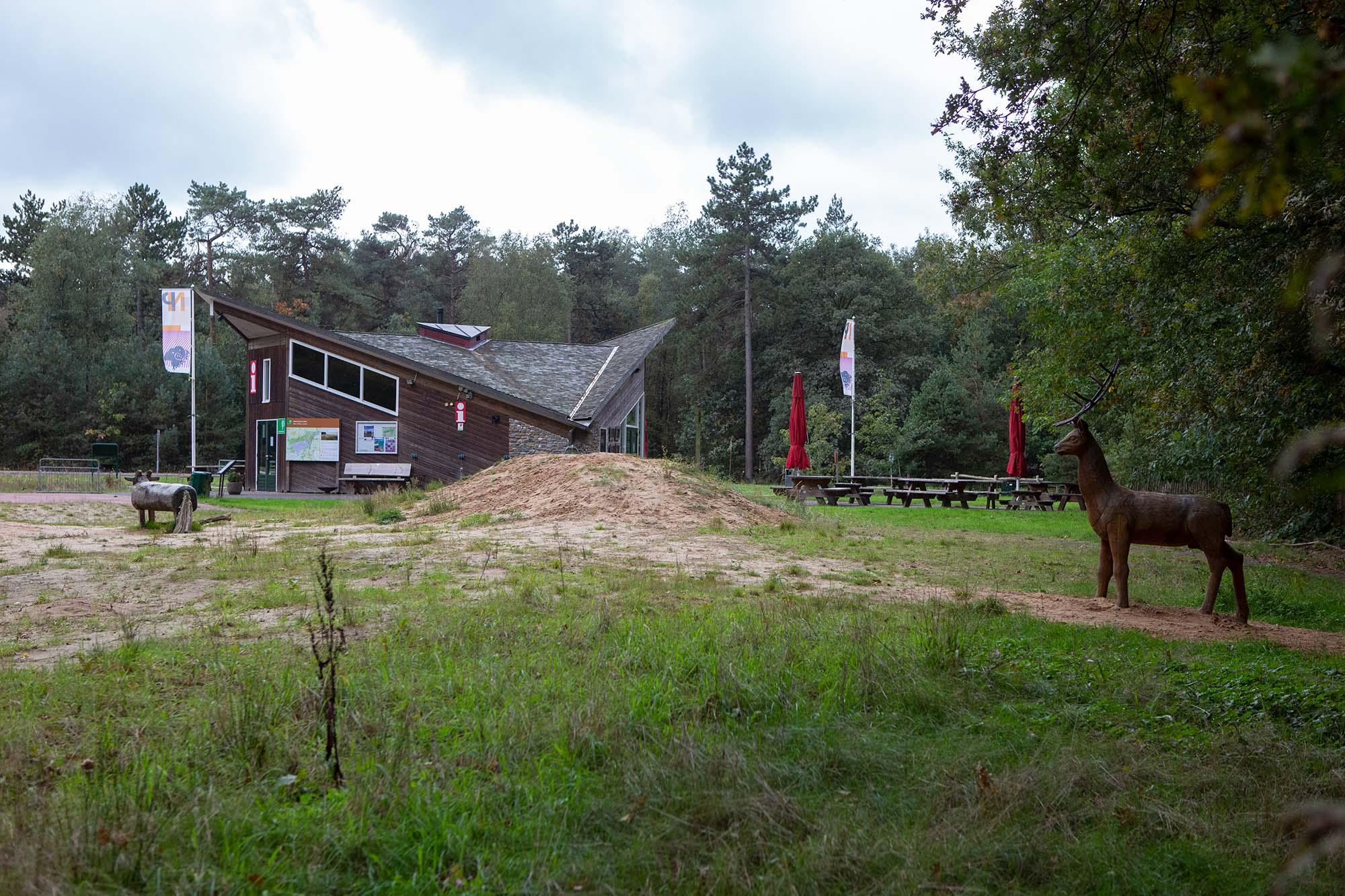 Boslounge Spier Dwingelderveld