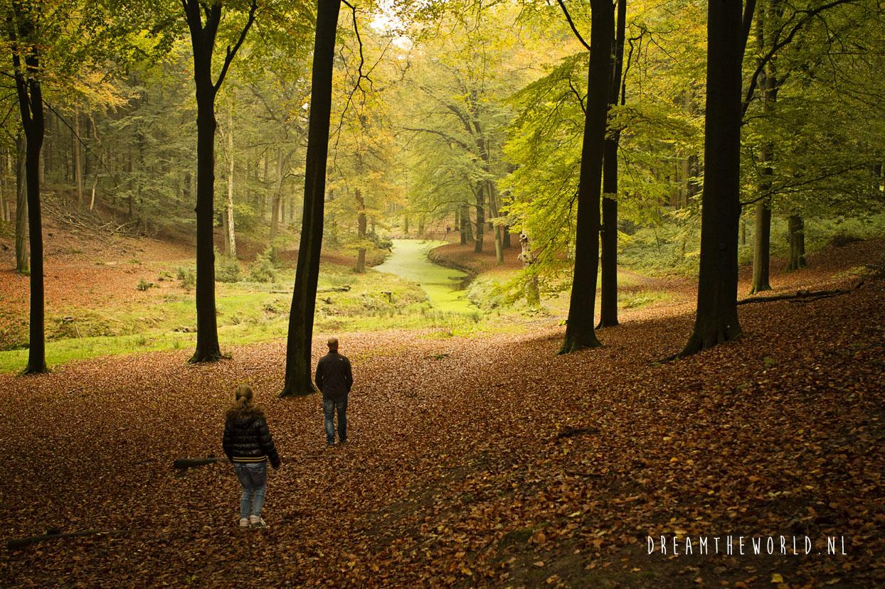 Nationaal Park de Veluwezoom Veluwe Rheden (4)