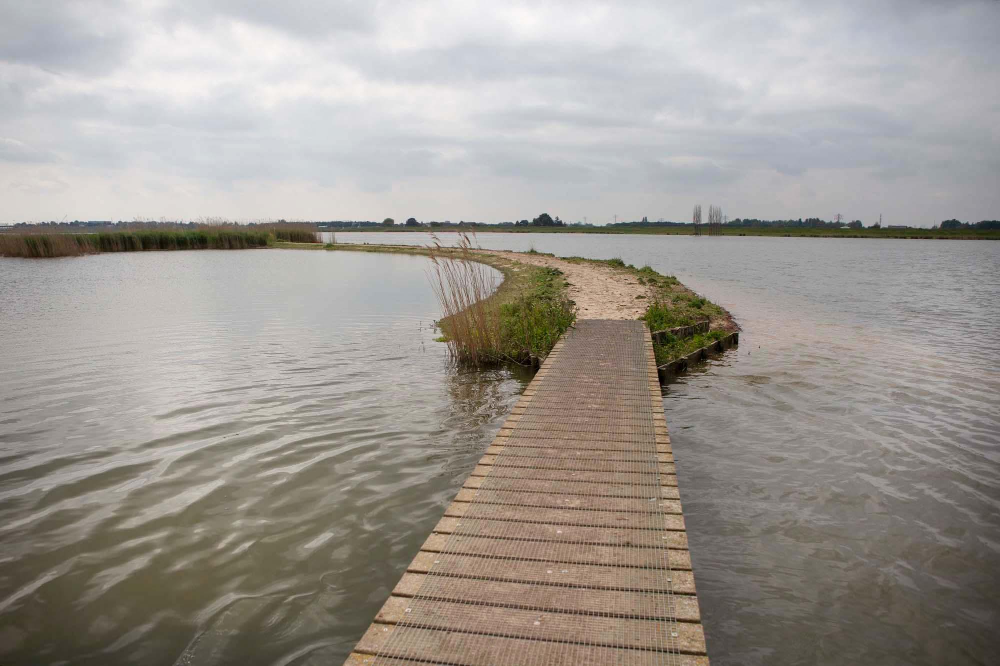 Ontdek natuur op IJsselmonde in Zuid-Holland bij Crezéepolder