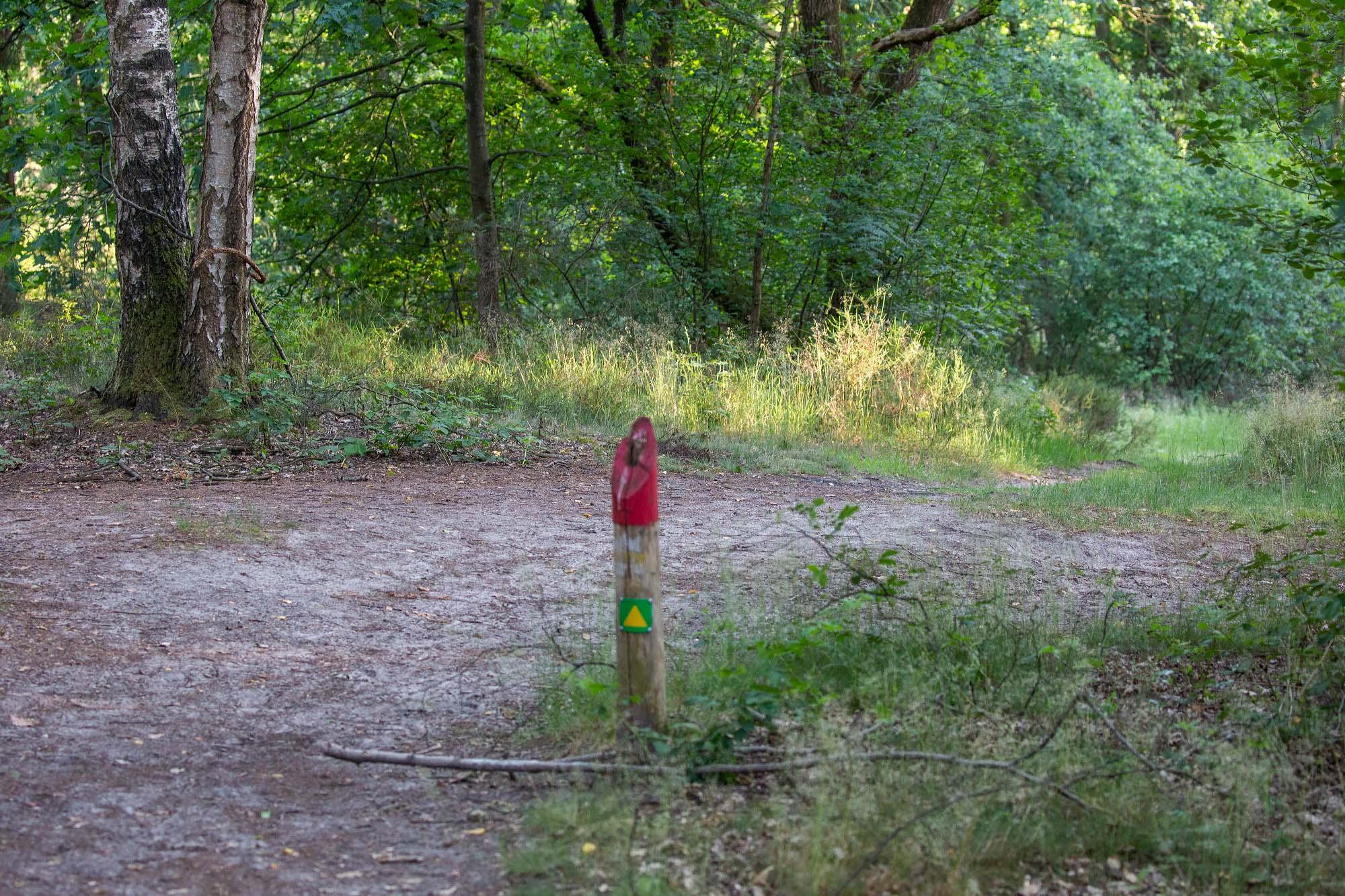 Wandelen in de Overloonse Duinen route De Vers
