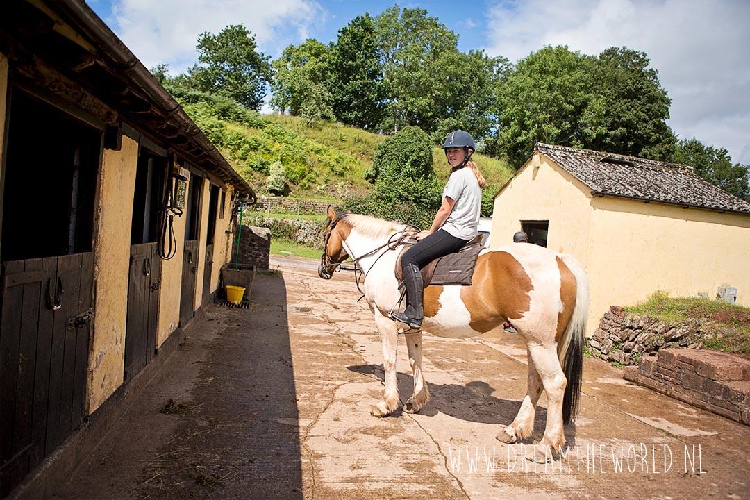 Paardrijden bij Exmoor National Park