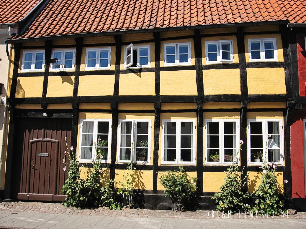 Ribe Denemarken (4)