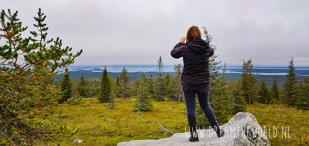 Riisitunturi National Park Fins Lapland