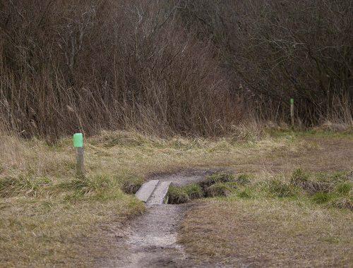 wandelen langs het veerse meer schotsman