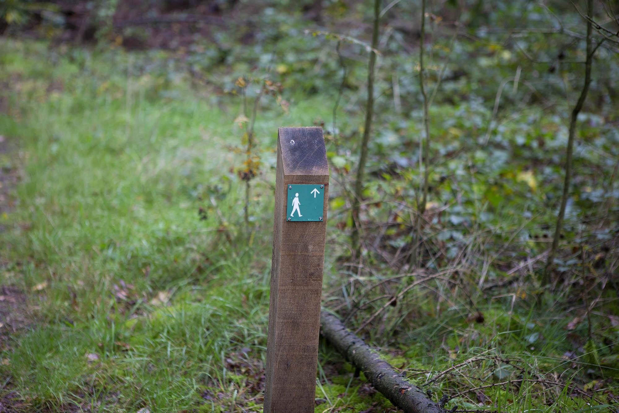 Arheologische wandelroute Sleenerzand