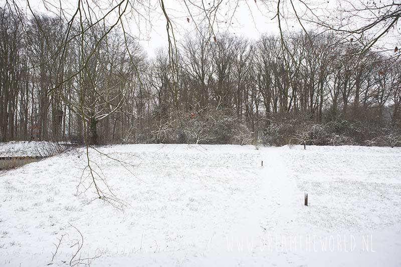 Ter Hooge sneeuw