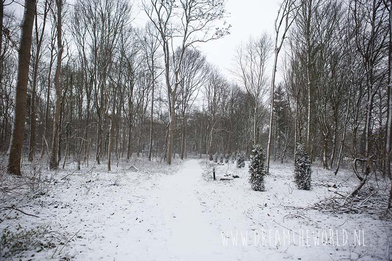 Ter Hooge pad in sneeuw