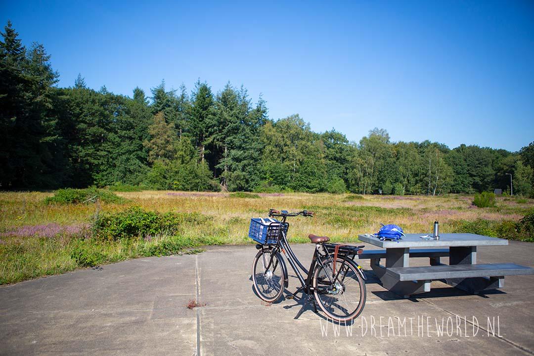 Picknicktafel met uitzicht op heide bij de Utrechtse Fietsvierdaagse