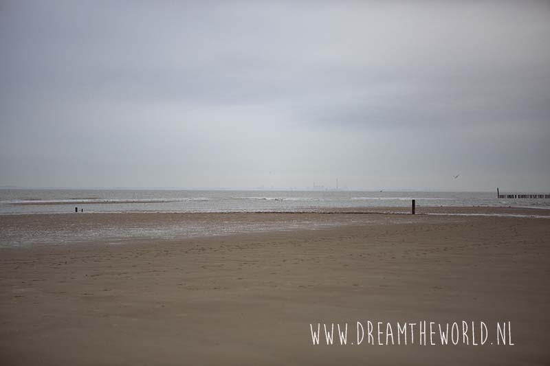 Strand Verdronken Zwarte Polder bij Nieuwvliet-Bad