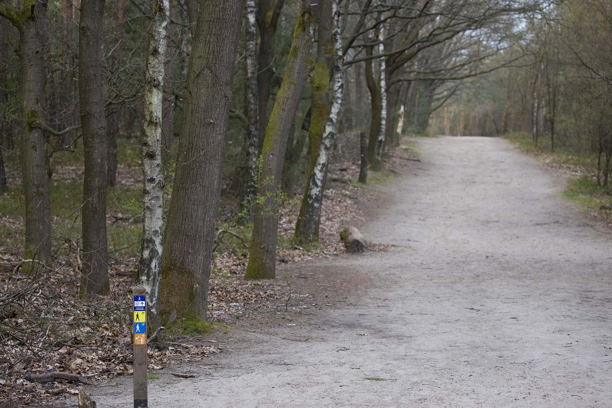 Mooiste wandel- en fietsroutes Hoenderloo Veluwe