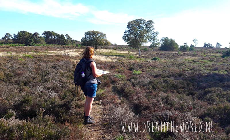 Wandelen Sallandse Heuvelrug outdooractiviteiten Nederland