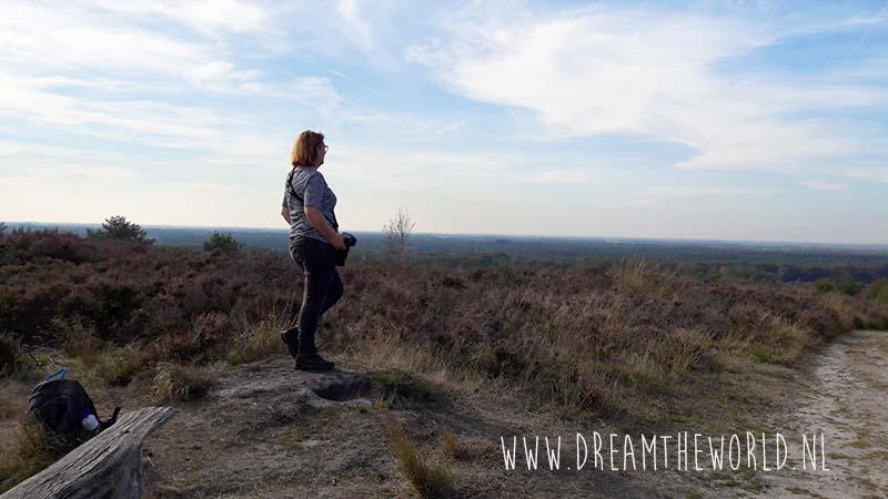 Wandelen op de Sallandse Heuvelrug | startpunt Holterberg
