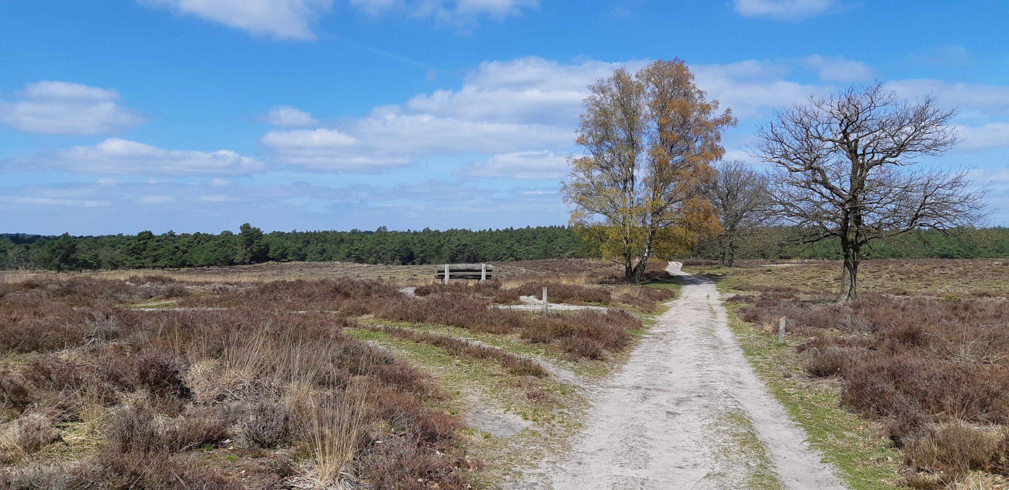 mooiste wandelroutes Deelerwoud Veluwe