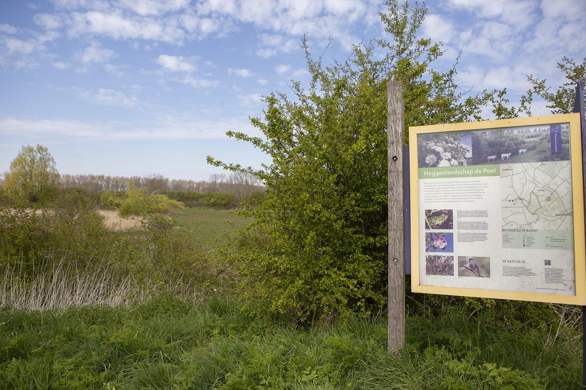 Wandelroute over de bloemendijken in Zeeland