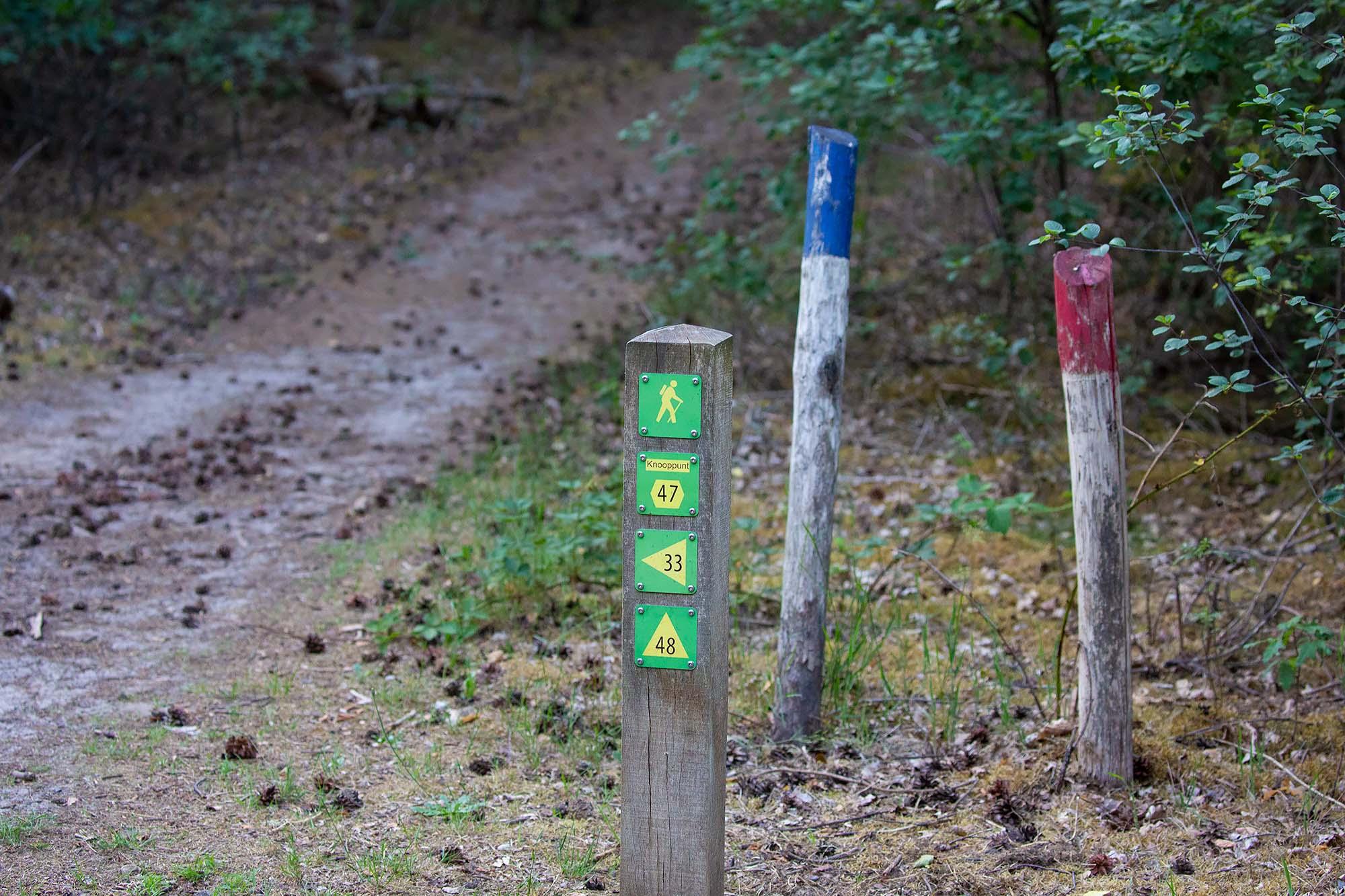 Wandelen Overloonse Duinen verschillende wandelroutes