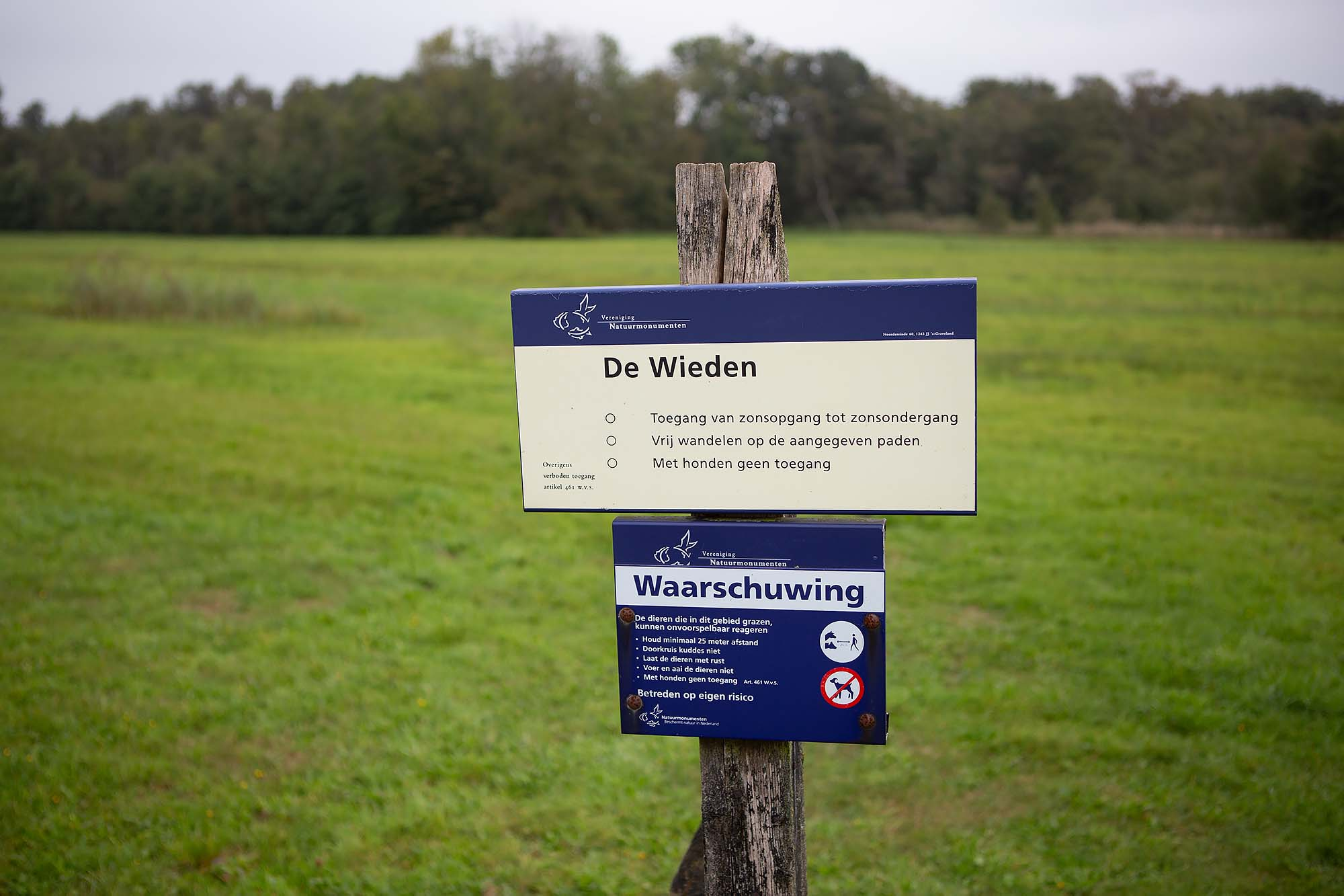 Weerribben-Wieden wandelen Kiersche Wijde (c) Dreamtheworld