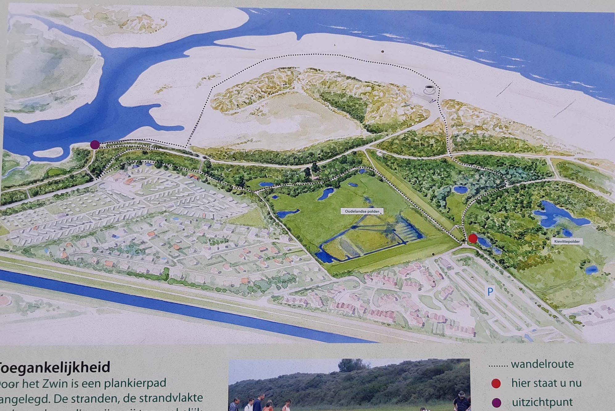 Natuurgebied het Zwin in Zeeland plattegrond met wandelroute