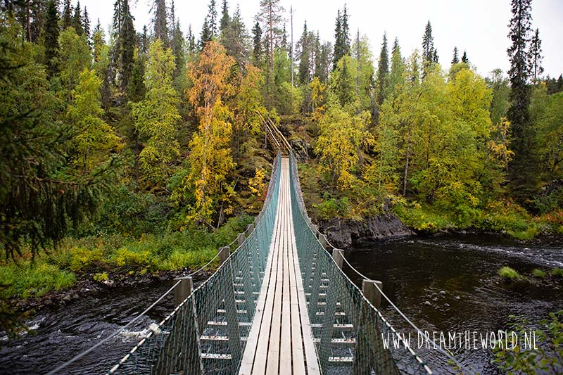 Wandelen in Oulanka National Park | Fins Lapland