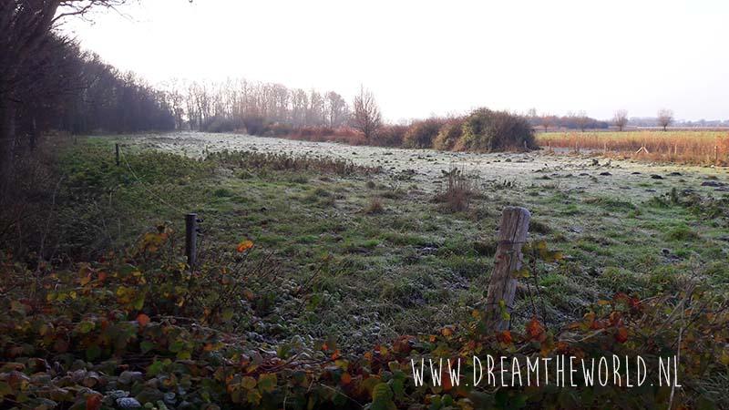 winterlandschap tijdens wandeling in Zeeland